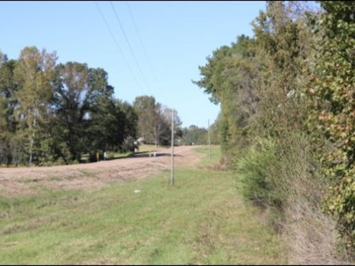 40 Acres In Newton County : Decatur : Newton County : Mississippi