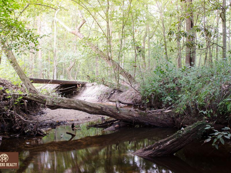 Hunting Tract With Year Round Creek : Bainbridge : Decatur County : Georgia