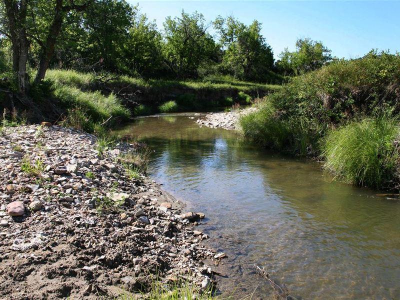 Beaver Creek Acreage : Alva : Crook County : Wyoming