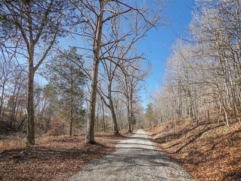 Sr 348 - 410 Acres : Blue Creek : Adams County : Ohio