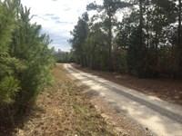 Private Acreage Near Downtown : Chapin : Lexington County : South Carolina
