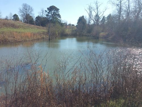 Beautiful Farm With Pond : Cullman : Alabama