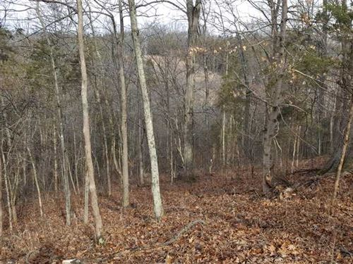 67 Acres of Great Hunting And a 39 : Madison : Jefferson County : Indiana