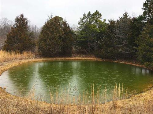 Unrestricted Acreage W/2 Mobile Ho : Blue Eye : Stone County : Missouri