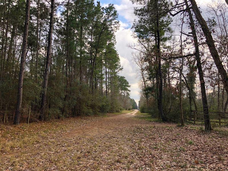 93 Acres-Mcrae Creek : Willis : Montgomery County : Texas