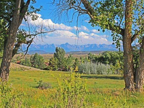 Montrose Valley Ranch : Montrose : Colorado