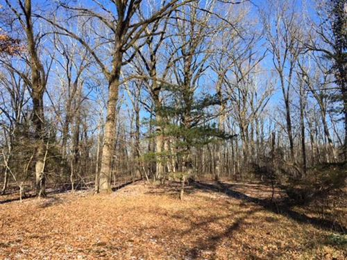 75 Acres With Hardwood Timber : Aberdeen : Monroe County : Mississippi