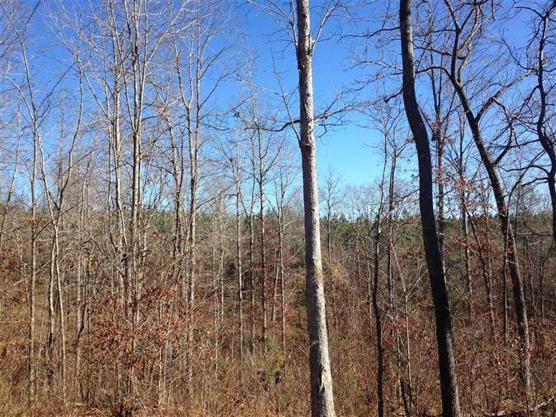 18 Acres With House Site in Ha : Hatley : Monroe County : Mississippi