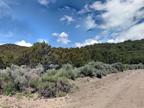 Costilla County, Co $12,000 Neg : Fort Garland : Costilla County : Colorado