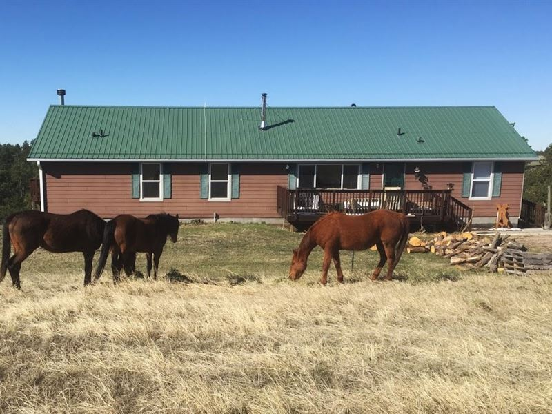 Pine Ridge Country Acreage : Crawford : Dawes County : Nebraska
