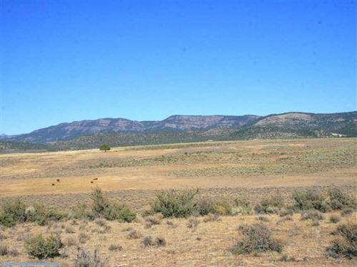 Hart Mountain 240 Acre : Fields : Lake County : Oregon