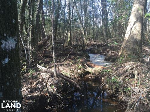 The May Branch Creek Tract : Brewton : Escambia County : Alabama