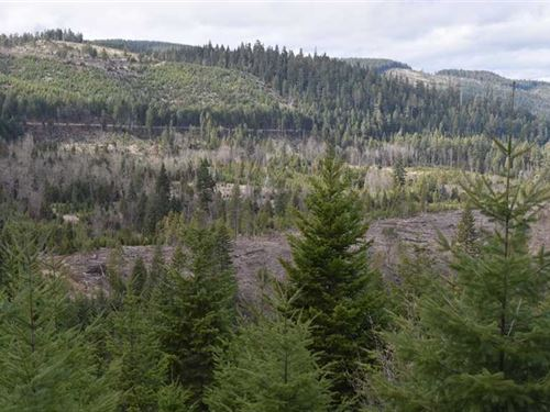 Elk Horn Creek Timber Farm : Trail : Douglas County : Oregon