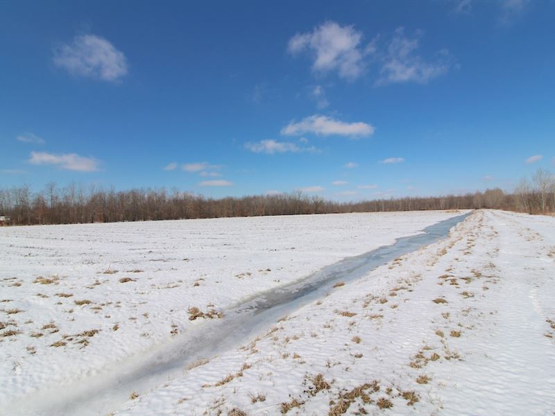 Kyle Rd - 131 Acres : Dorset : Ashtabula County : Ohio
