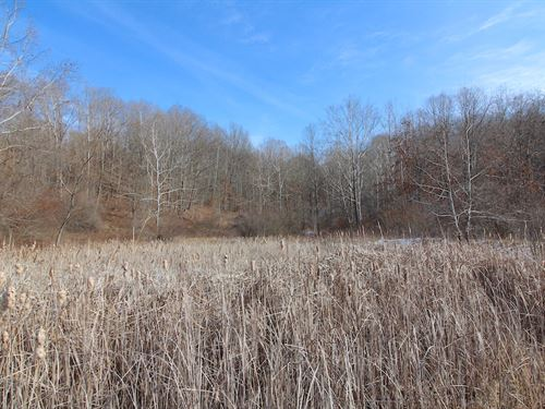 Ashton Hill Rd - 76 Acres : Dexter City : Noble County : Ohio