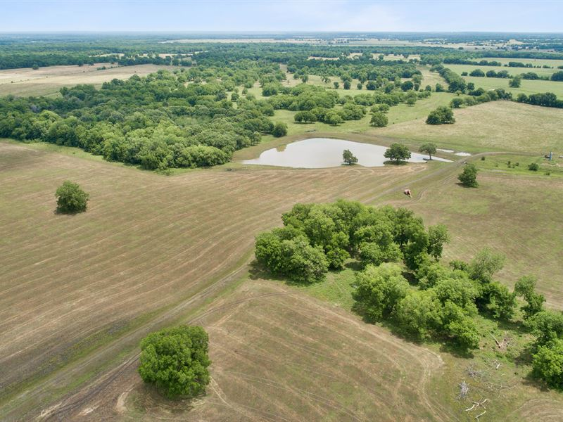 604 Acres In Centerville : Centerville : Leon County : Texas