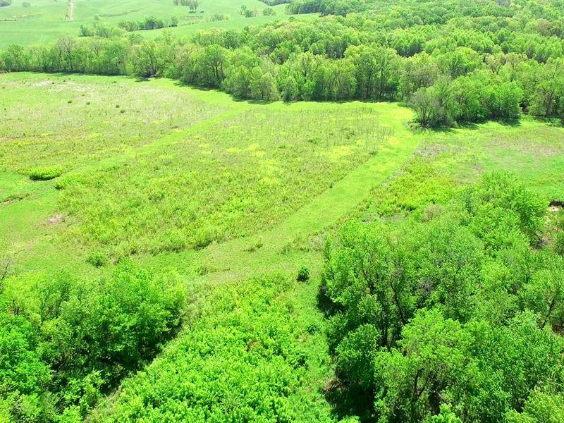 52 Acres County Rd 314 Chariton Co : Marceline : Chariton County : Missouri