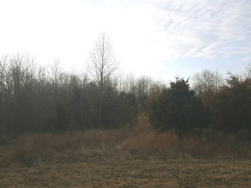 Ginn Rd - 5.78 Acres : New Richmond : Clermont County : Ohio