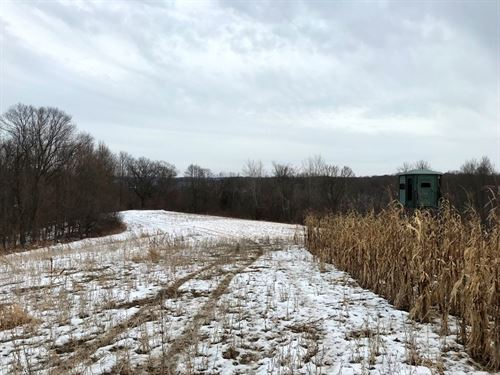 108+/- Acres Hunt & Build Parcel : Boscobel : Crawford County : Wisconsin