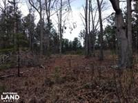 Glendon Land 1 : Robbins : Moore County : North Carolina