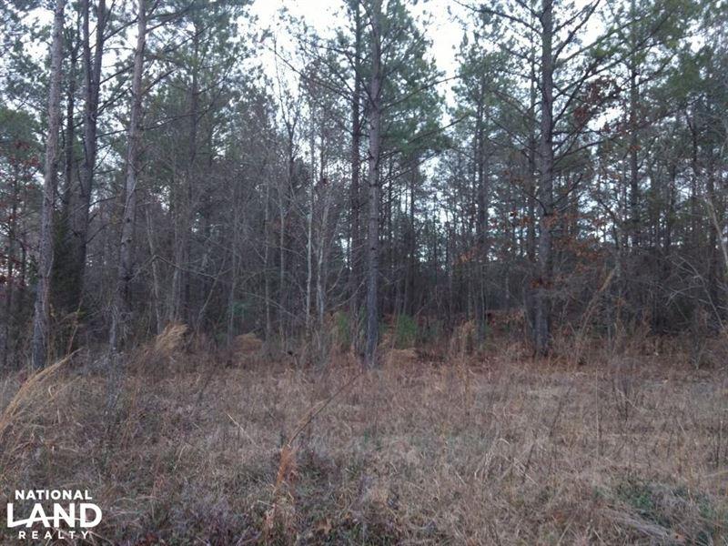 Glendon Land 2 : Robbins : Moore County : North Carolina