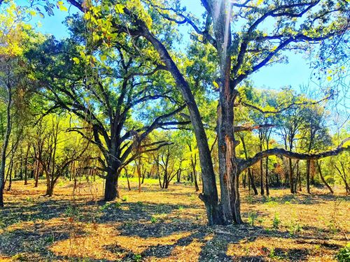 Lake Lots Up To 5 Acres : Kemp : Kaufman County : Texas