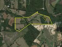 Beautiful Farm Land, Lynchburg Area : Rustburg : Campbell County : Virginia