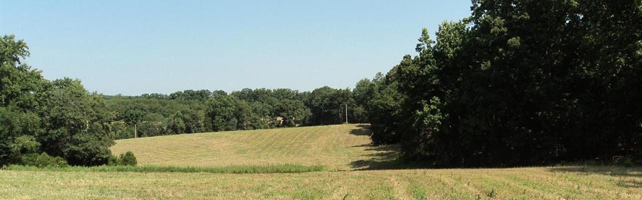 126 Acres Close To Liberty U : Rustburg : Campbell County : Virginia