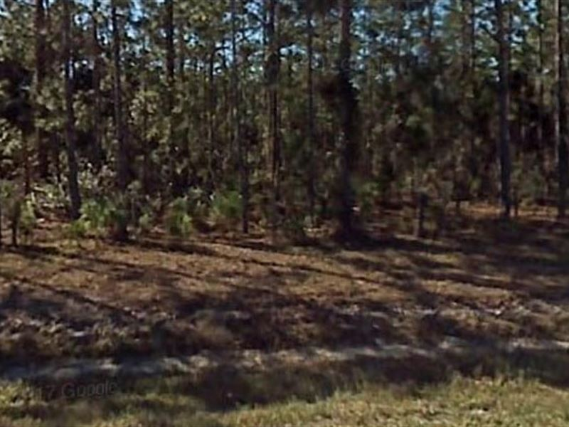 Polk County,Fl $12,000 Neg : Frostproof : Polk County : Florida