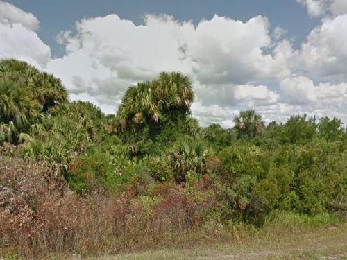 Okeechobee County, Fl 25,000 Neg : Okeechobee : Florida