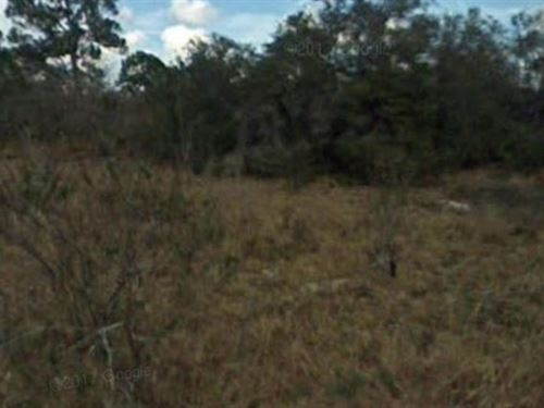Highlands County, Fl $12,000 Neg : Lake Placid : Highlands County : Florida