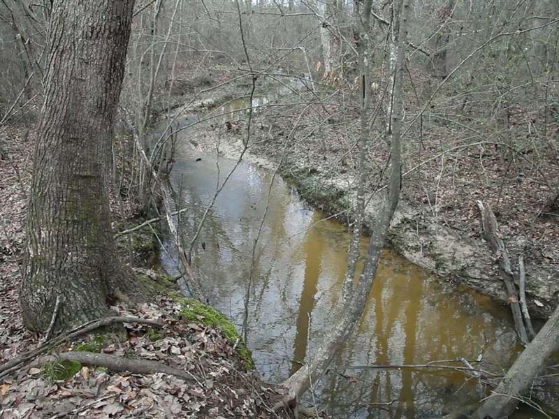 Timberland, 3/4 Mi Creek, Cable Tv : Sylacauga : Talladega County : Alabama