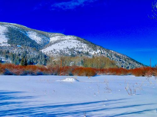 Lush Pasture & 2 Creeks : Anaconda : Deer Lodge County : Montana