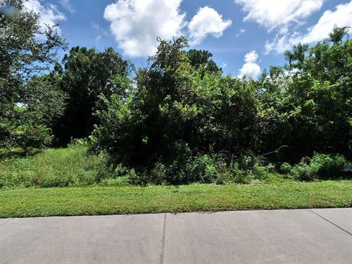 .24 Acres In Port St Lucie, FL : Port St Lucie : Saint Lucie County : Florida