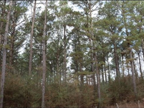 16 Acres In Kemper County : Preston : Kemper County : Mississippi