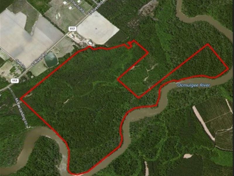McRae Landing Tract : McRae : Telfair County : Georgia