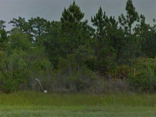 Polk County, Fl $24,000 Neg : Lake Wales : Polk County : Florida