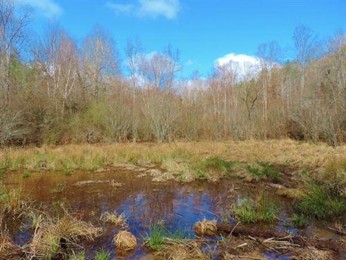 Reduced $20K, Great Hunting Get-A : Elberton : Elbert County : Georgia