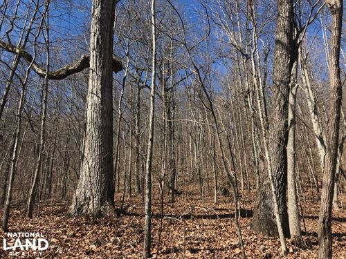 Springville Recreation And Homesite : Trussville : Saint Clair County : Alabama