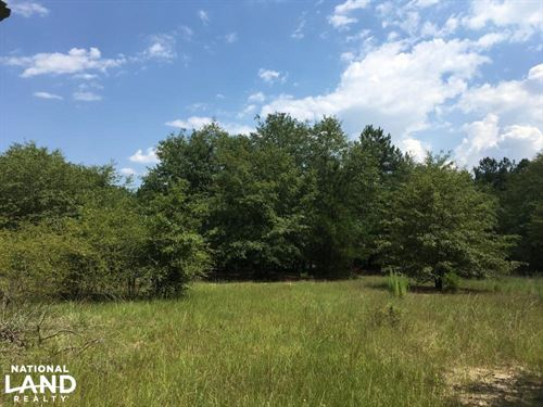 Hunting Land And Home Site With Pon : Ruby : Chesterfield County : South Carolina