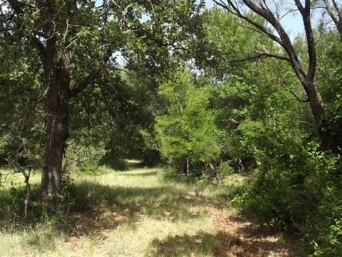 Solid Tree Cover : Brownwood : Brown County : Texas