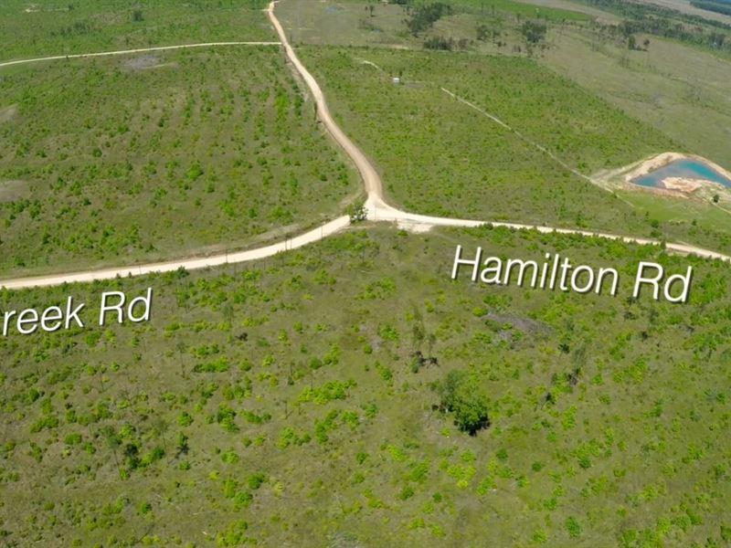 319 Ac Memory Ranch : Groveton : Trinity County : Texas
