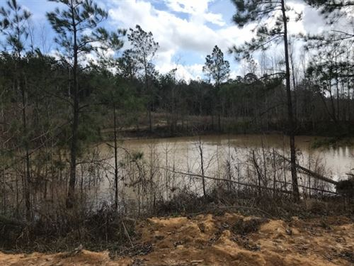 103 Acres Wilkinson Co. Stump Road : Gloster : Wilkinson County : Mississippi