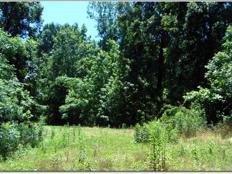 200 Acres In Yazoo County : Yazoo City : Yazoo County : Mississippi