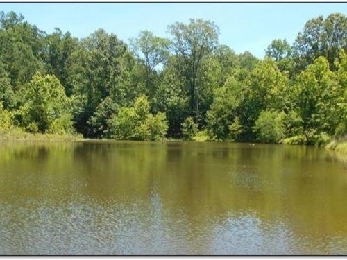 210 Acres In Yazoo County : Yazoo City : Yazoo County : Mississippi
