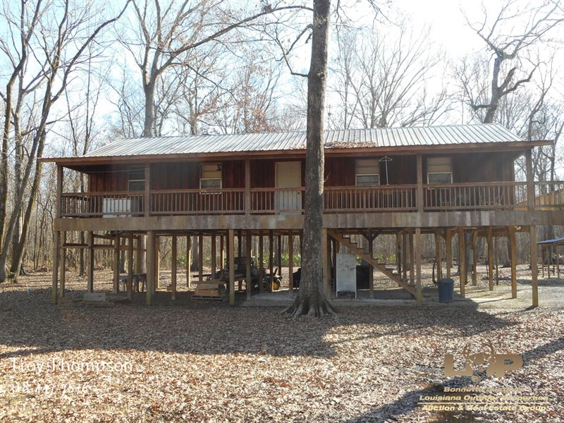 Camp Near Richard K Yancey Wma : Vidalia : Concordia Parish : Louisiana