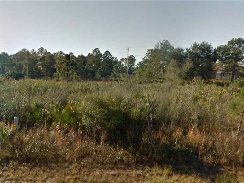 Lee County, Fl $27,500 Neg Reduced : W Lehigh Acres : Lee County : Florida
