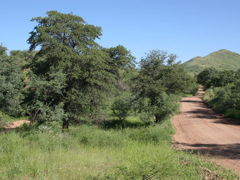 Salero Ranch : Tubac : Santa Cruz County : Arizona