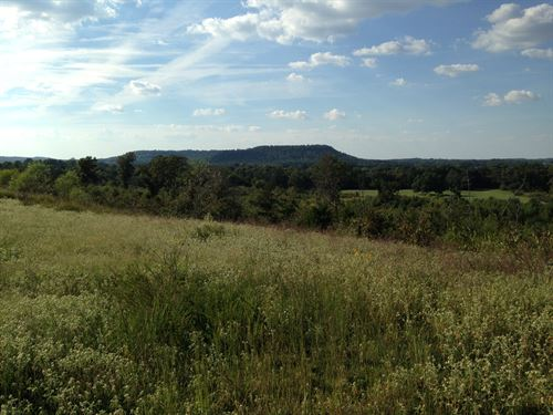 136 Acres Vacant Land Freedom : Charleston : Franklin County : Arkansas