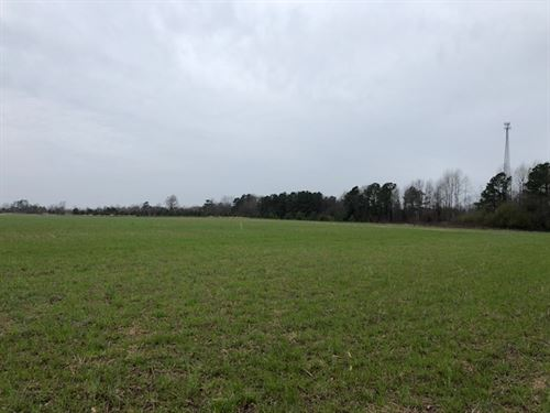 Superb 105 Acre Farm Shannon : Shannon : Hoke County : North Carolina